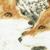 Заиндевелые деревья-Дружные лисицы - художник нихонга Кондо Юкио